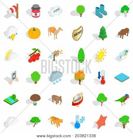 Tiger icons set. Isometric style of 36 tiger vector icons for web isolated on white background
