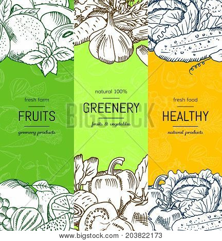 Vector vegan, healthy, organic banner set with doodle sketched fruits and vegetables. Healthy fruits and greenery illustration