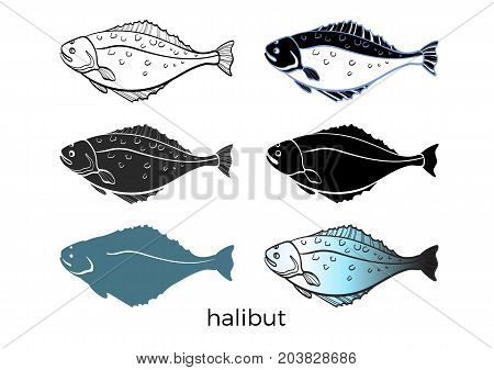 Set of sea fish on white background. Halibut. Vector shape. Seafood sketch silhouette. Illustration isolated and grouped for easy editing eps.10