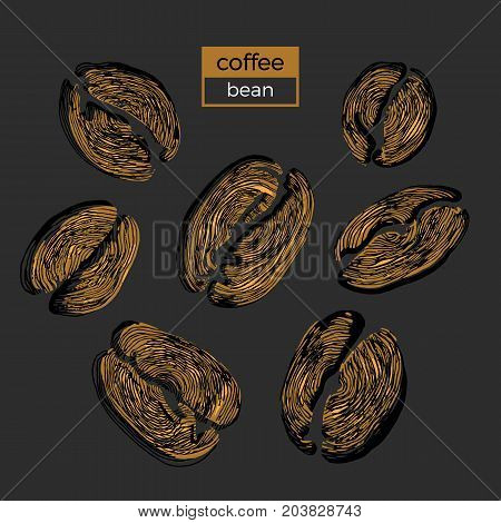 Set of different golden coffee beans on black background. Organic product. Vector color illustration. Collection. Sketch eps.10