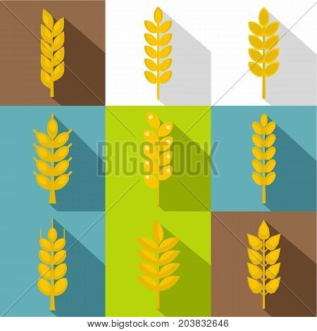 Cereal grain icon set. Flat style set of 9 cereal grain vector icons for web design