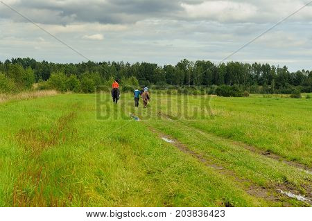 going on horseback by field road in early autumn in the northwest of Russia