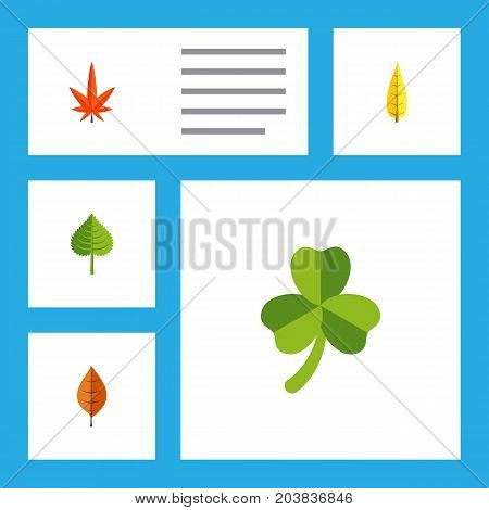 Flat Icon Foliage Set Of Leaf, Hickory, Aspen And Other Vector Objects