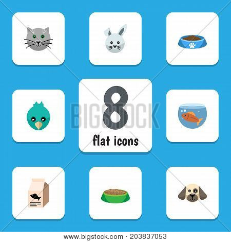 Flat Icon Animal Set Of Kitty, Bunny, Sparrow And Other Vector Objects