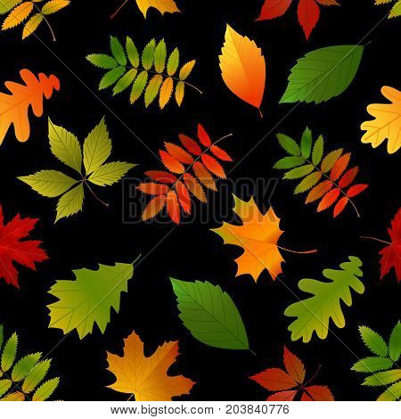 Seamless Pattern With Set Autumn Yellow, Green, Red Leaves.