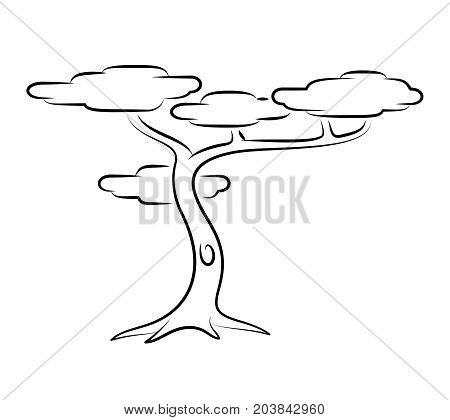 Tropical Tree. Line Art Vector Illustration Of A Tropical Tree.