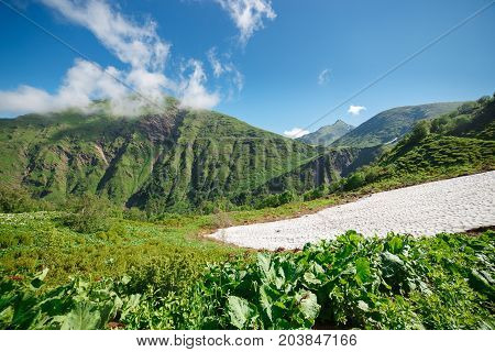 Among Alpine Meadows and Glaciers in Caucasus Mountains. Russia, Sochi, Krasnaya Polyana, Rosa Khutor. Altitude 2300m.