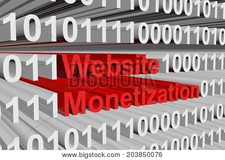 Website Monetization is presented in the form of binary code 3D illustration