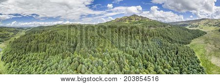 Aerial of a forest in Argyll, Scotland