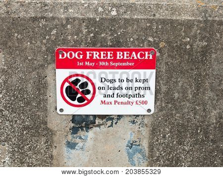 A Sign Dog Free Beach On Wall Penalty Dovercourt Harwich