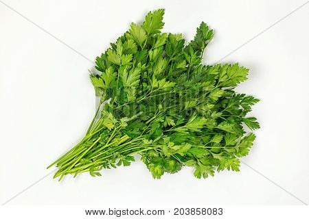 Parsley herb leaves. Parsley bunch isolated on white background.