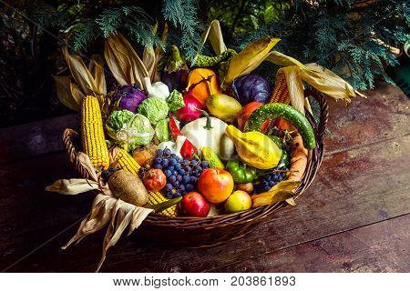 Basket Of Organic Bio Fruits And Vegetables