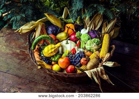 Basket Of Organic Fruits And Vegetables