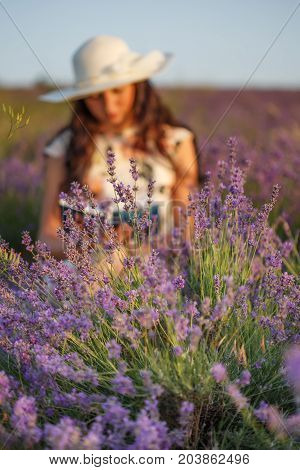 Romantic Reading Woman On Lavender Field