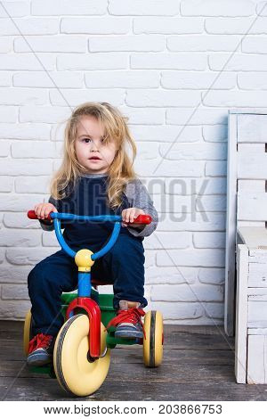 Baby cyclist with long blond hair on white brick wall. Playing and having fun. Happy childhood concept. Boy riding bicycle in room. Child and tricycle.