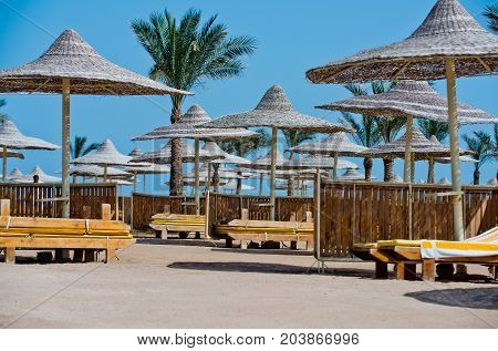 Relax and holiday. Beach straw umbrella with palm tree. Umbrella and beach bed. Sunny blue sky at resort. Summer vacation and traveling.