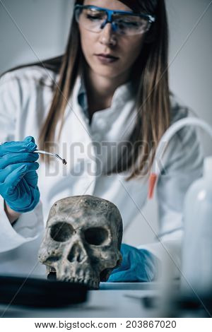 Forensic Science. Female Scientist In The Lab. Toned Image