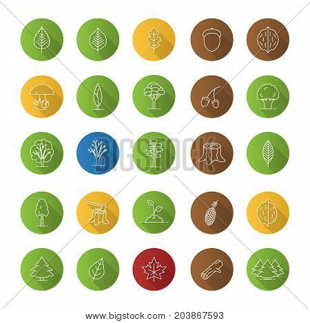 Tree types flat linear long shadow icons set. Forest, park. Forestry. Vector outline illustration