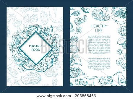 Vector handdrawn fruits and vegetables card, brochure, flyer template