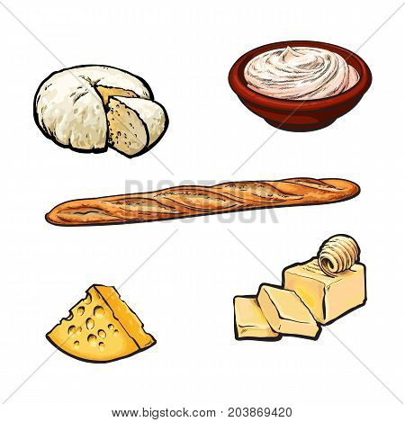 Vector sketch cartoon sour cream in ceramic brown pot or plate, soft brie and yellow porous cheese, butter bar with clices and french baguette bread loaf. Isolated illustration on a white background.