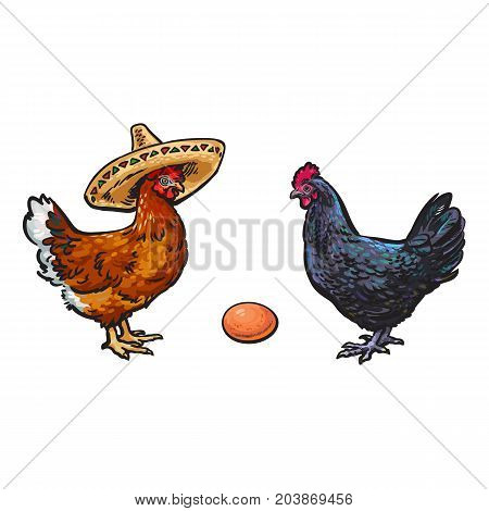 vector chicken hen brown egg, dark blue chicken and brown chicken in sombrero sketch set isolated. Illustration on a white background