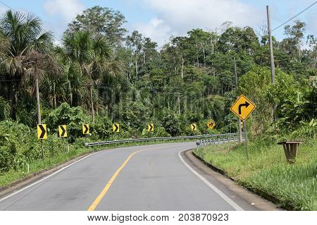 road through the Amazon area of Ecuador