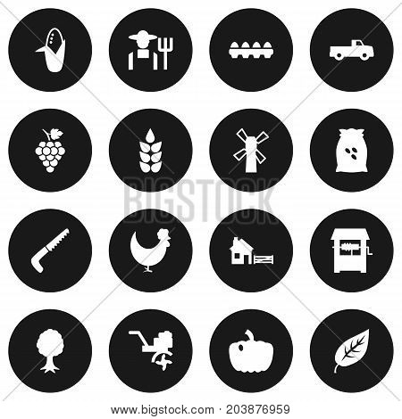 Collection Of Hacksaw, Pickup, Rural And Other Elements.  Set Of 16 Agriculture Icons Set.