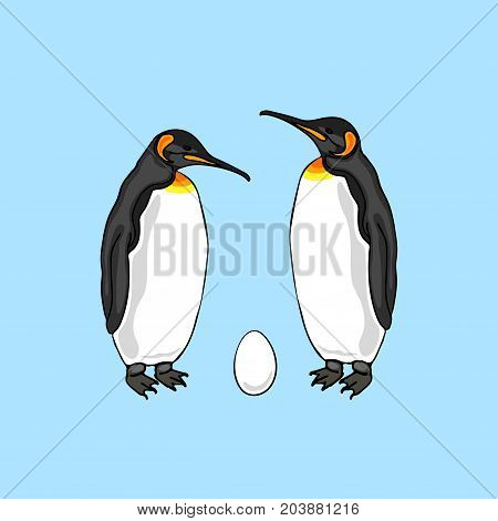 Vector illustration of bird penguin couple with egg. Emperor penguin family