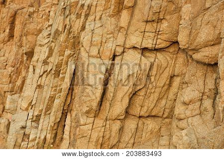 Stone texture for design. A real stone texture. Stone texture of a gray tone