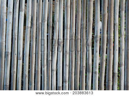 The Old  Bamboo Texture  In Farmhouse At Farmland