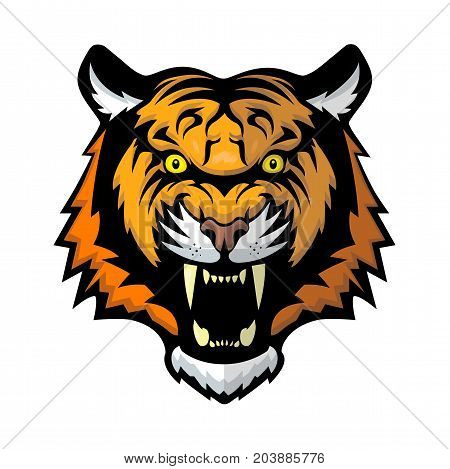 Aggressive and powerful tiger on white background for design