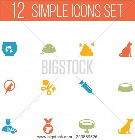 Collection Of Neckband , Medallion, Scissor Elements.  Set Of 12 Mammal Icons Set.