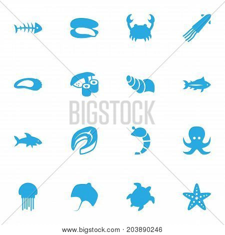 Collection Of Tortoise, Lobster, Tunny And Other Elements.  Set Of 16 Food Icons Set.