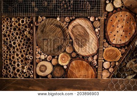 Pile of firewood. Cozy Stacked firewood heap. Winter concept - Wooden Wall
