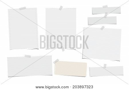 Torn ruled, note, notebook, copybook paper strips, sheets stuck with sticky tape on white background