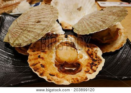 Grilled fresh japanese scallop hotate with shell on black plate Popular menu in Hokkaido fresh market.