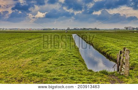 Rural Dutch landscape (polder) with a specific canal in a green field.