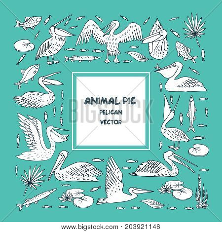 Pelican pattern, texture design vector illustration bstract