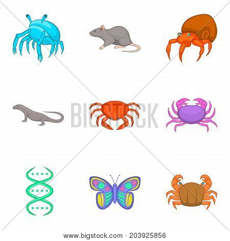 Study of fauna icons set. Cartoon set of 9 study of fauna vector icons for web isolated on white background