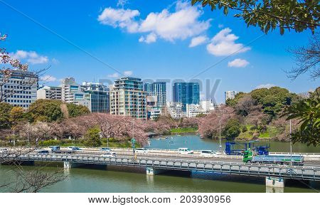 TOKYO, JAPAN - JULY 02, 2017: Car crossing the bridge in a beautiful sunny day with a gorgeous view of the city in the horizont in Tokyo, Japan.