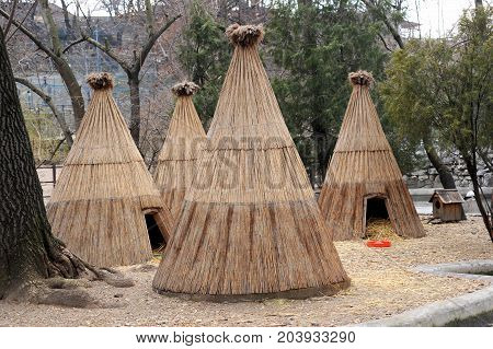 Wigwam house in the national park, wigwam village
