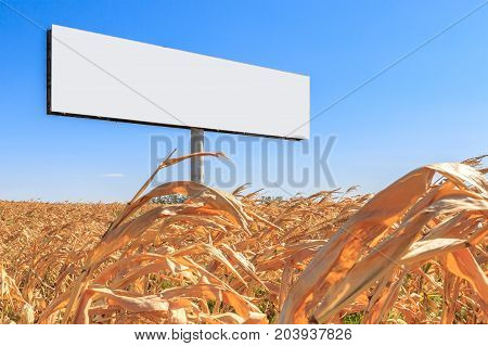 Large white billboard free from text on the pillar in a cornfield