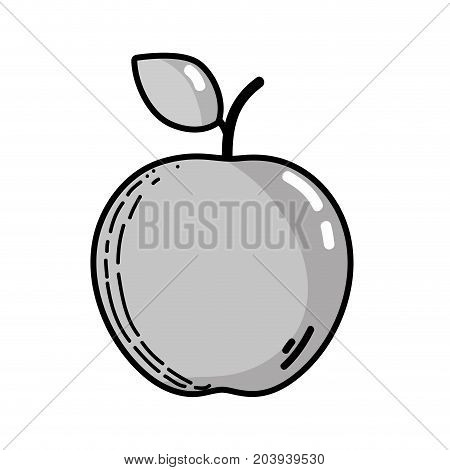 grayscale delicious fresh apple fruit nutrition vector illustration