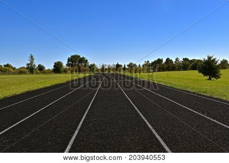 A five lane synthetic track appears to run into the distant trees