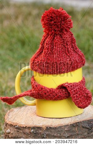 Cup of tea with woolen cap wrapped woolen scarf on wooden stump in garden warming beverage for flu on autumn or winter evening