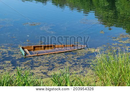 Sunken wooden boat on the river or lake near the shore. In the reflection of the water you could see trees. On the water small ripples. Near the shore grow reeds and floating algae and duckweed.