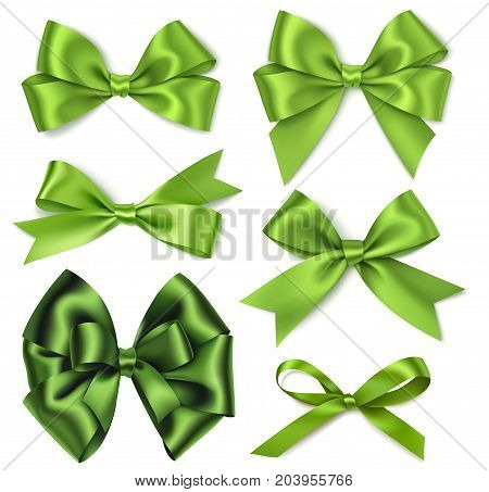 Holiday decorations. Collection of vector green bows