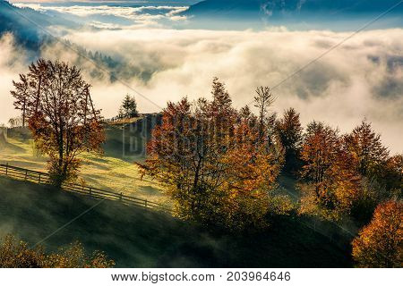 Gorgeous Countryside With Rising Fog In Valley