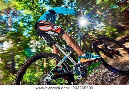 Moscow Russia - August 24 2017: Biker riding with aggressive turns. Mountain Bike cyclist riding in forest. Rider in action at mountain bike sport. MTB biking.