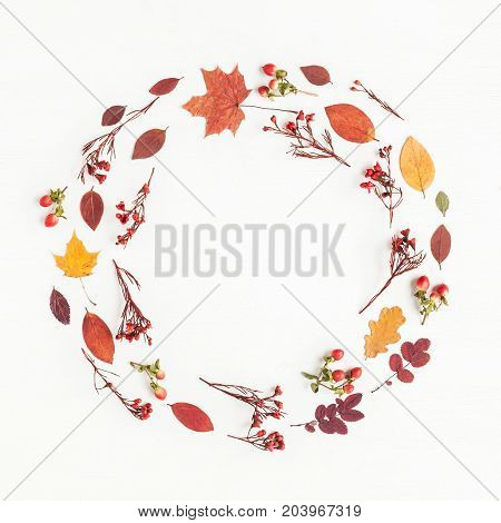 Autumn composition. Wreath made of autumn flowers and leaves on white background. Flat lay top view copy space